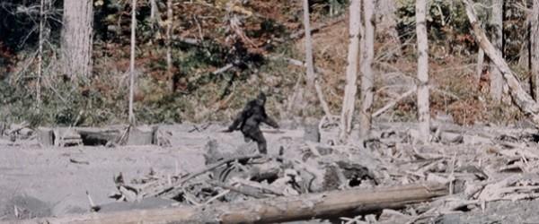 The Patterson Bigfoot